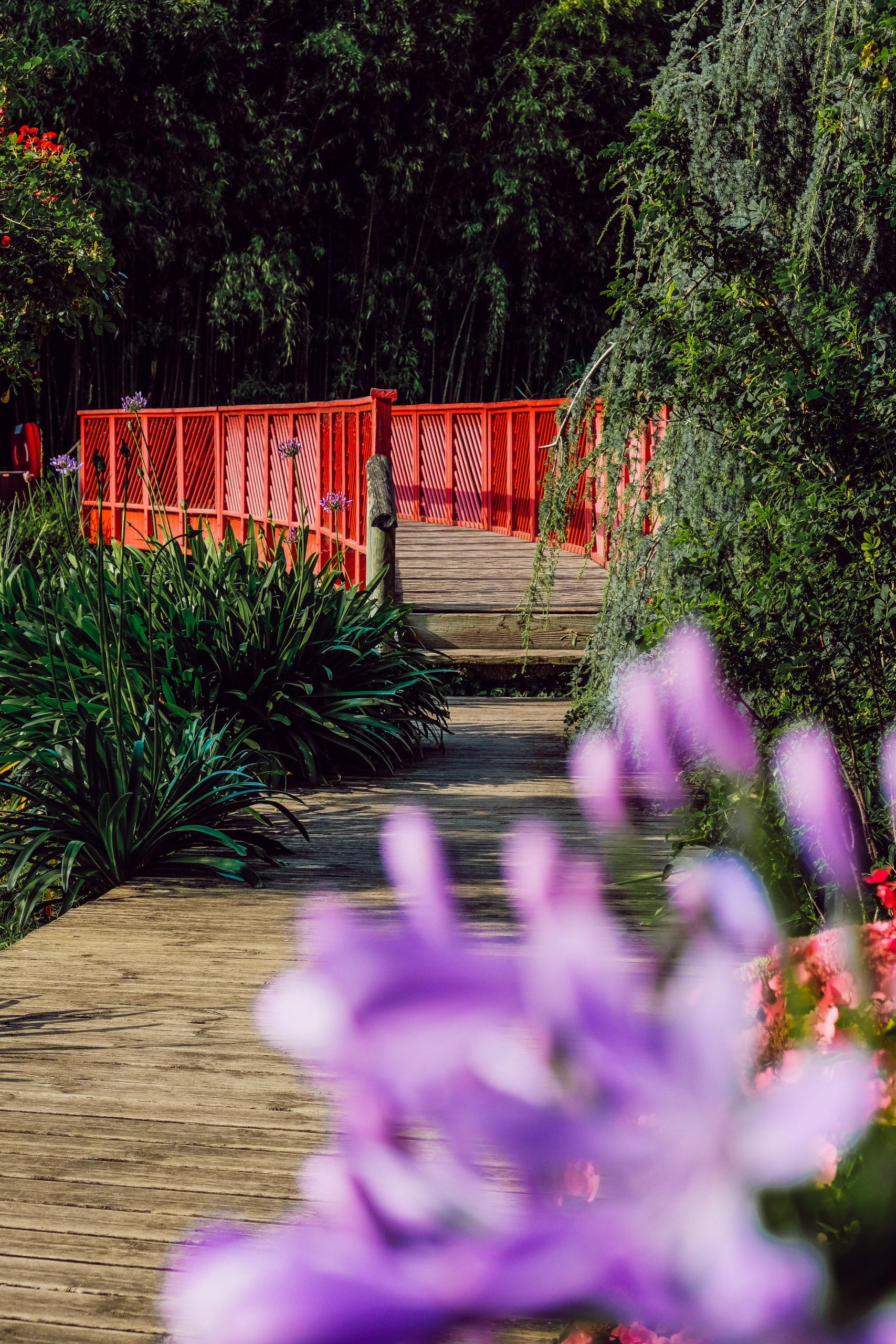 Jardin des Plantes de Saint Cyprien